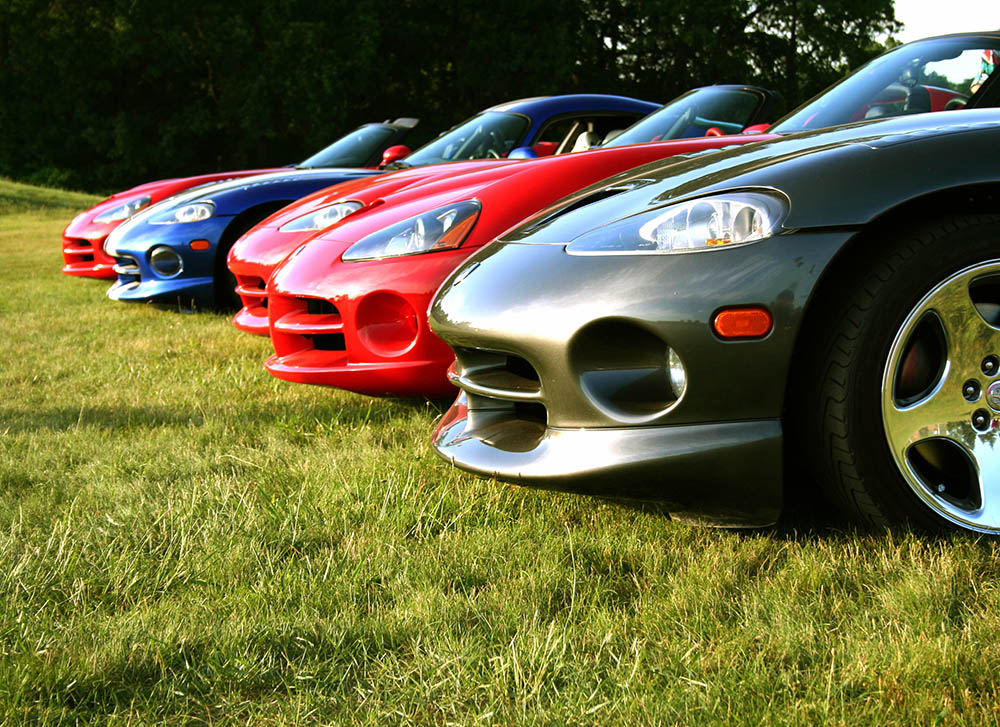 vipers are ready for racing